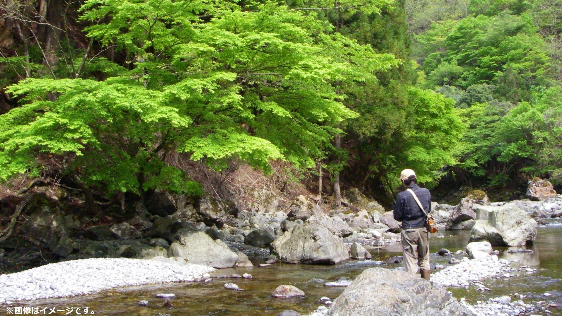 渓流釣りサンプル